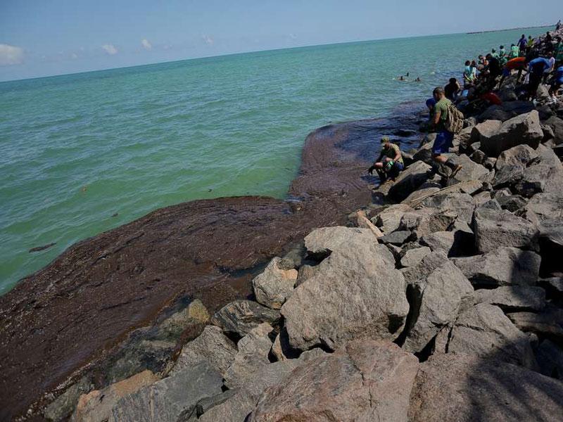 Origem de derramamento de óleo ainda é mistério, diz Marinha