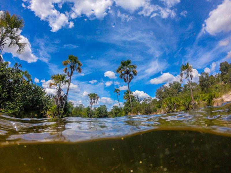 Decreto que flexibilizou o licenciamento ambiental na Bahia é ilegal, diz MPF
