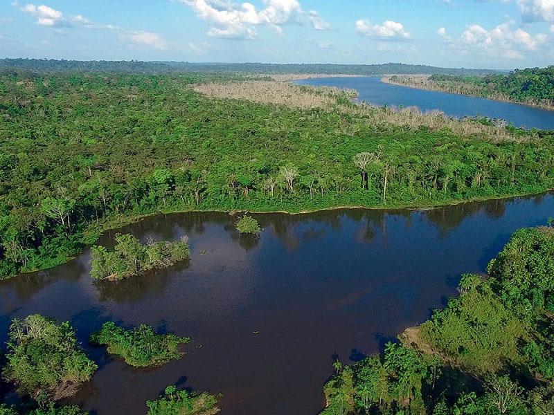 Inpe estima em 9.762 km² desmatamento na Amazônia Legal em um ano
