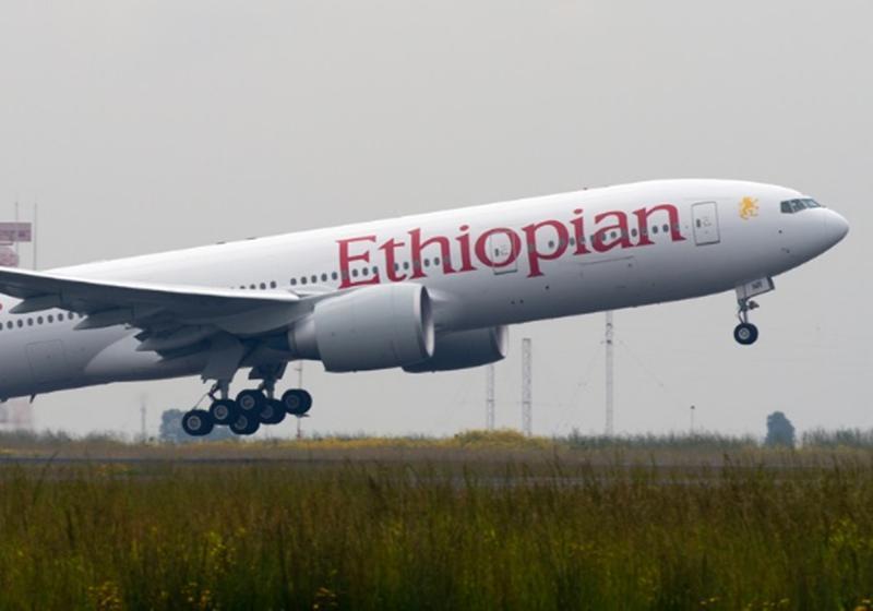 Companhia diz que nenhuma das 157 pessoas a bordo de avião sobreviveu