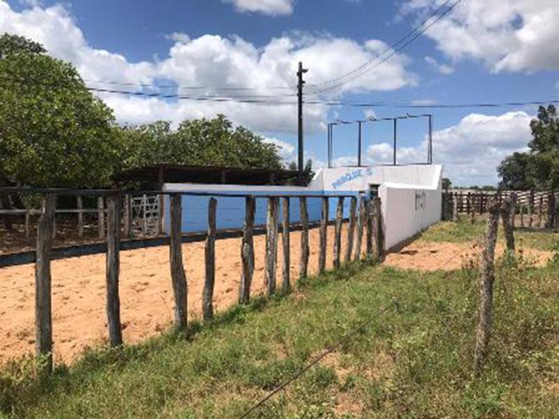 Espaço de vaquejada interditado pela ADAB em Ribeira do Pombal
