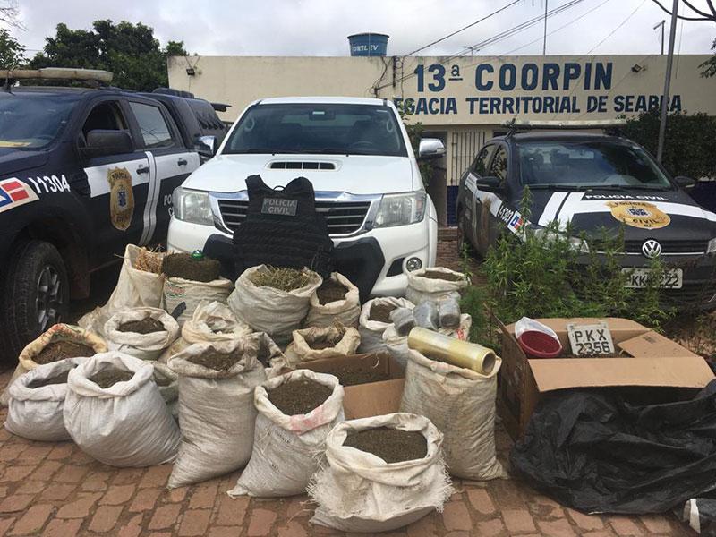 Cento e sessenta quilos de narcótico são apreendidos em Seabra