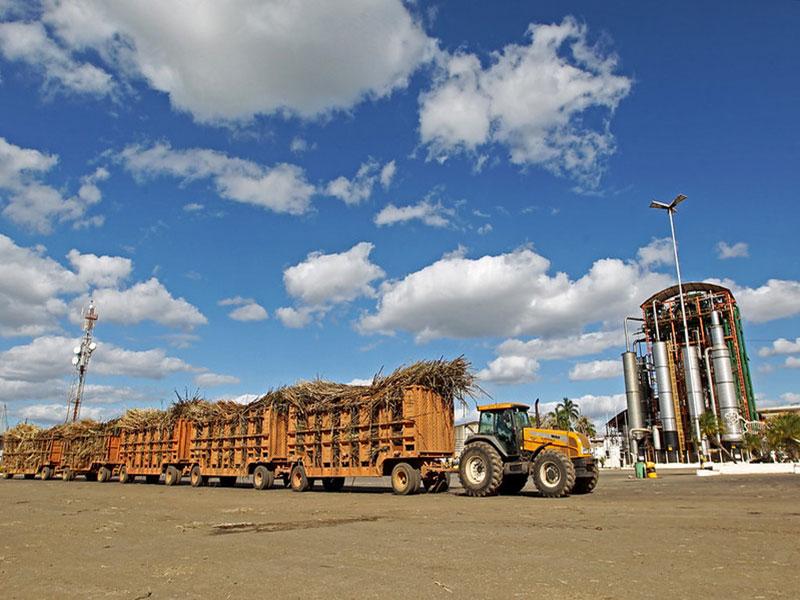 IBGE estima crescimento de 13% da produção de grãos na Bahia para 2020