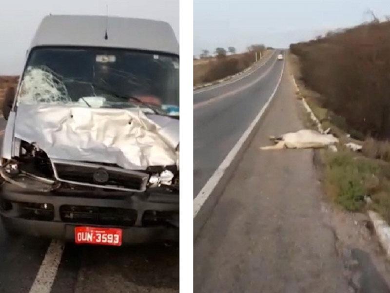 Van de Ibiassucê que transportava passageiros para Conquista se envolve em acidente na BR-030