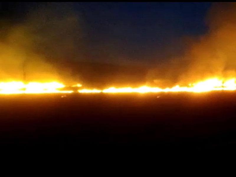 Incêndio é registrado em fazenda próximo a Dom Basílio