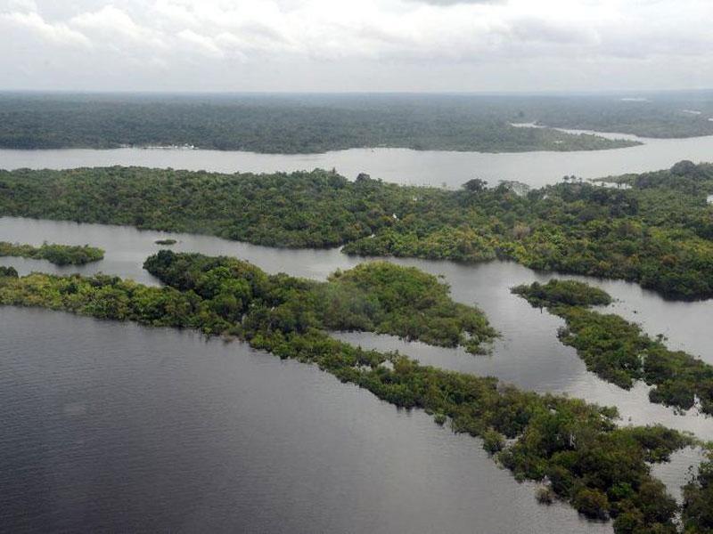 Ibama lança edital para contratar empresa que monitore desmatamento