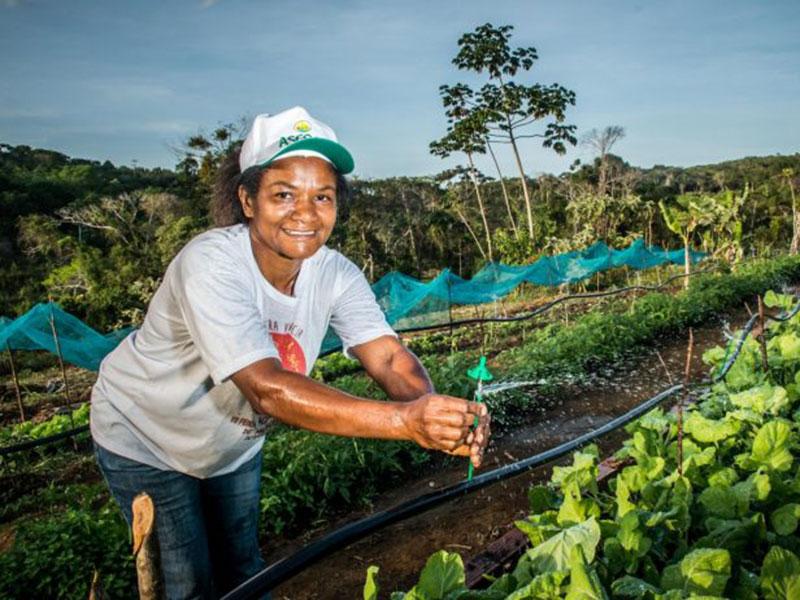 Garantia-Safra viabiliza continuidade de produção para mais de 44 mil famílias baianas