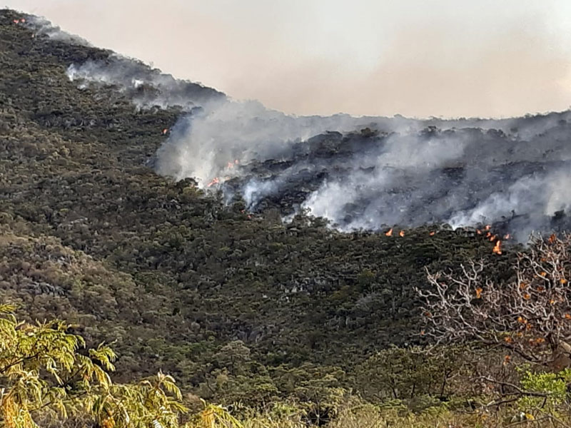 Força tarefa se encontra em campo combatendo o incêndio na Serra das Almas