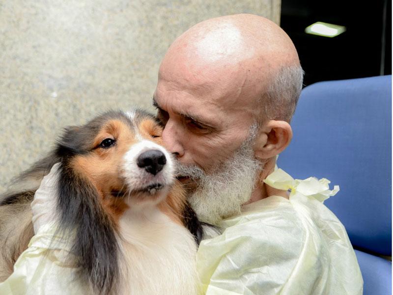Médico se surpreende com melhora de paciente com câncer que recebeu visita de cachorro