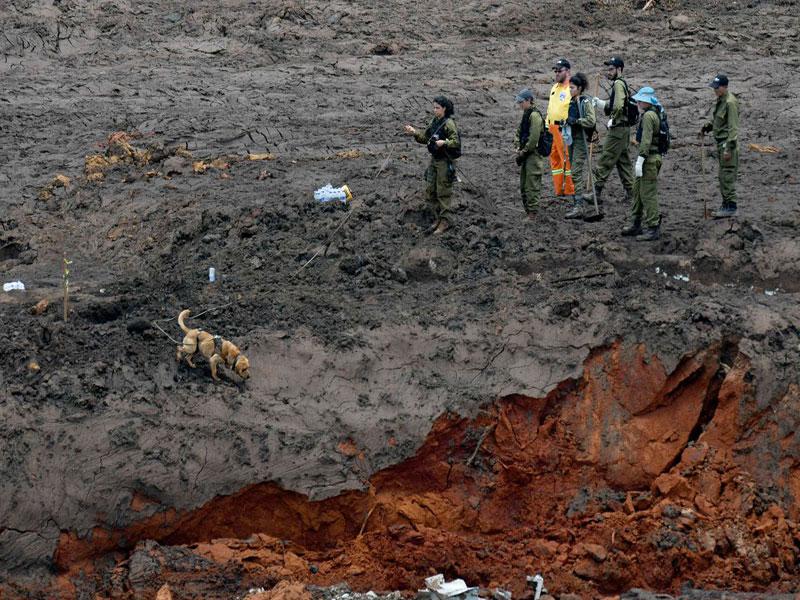 Brumadinho: Bombeiros encontram mais um corpo de vítima da tragédia