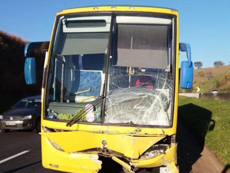 Acidente envolvendo ônibus que seguia para Caculé deixa dois mortos na Fernão Dias