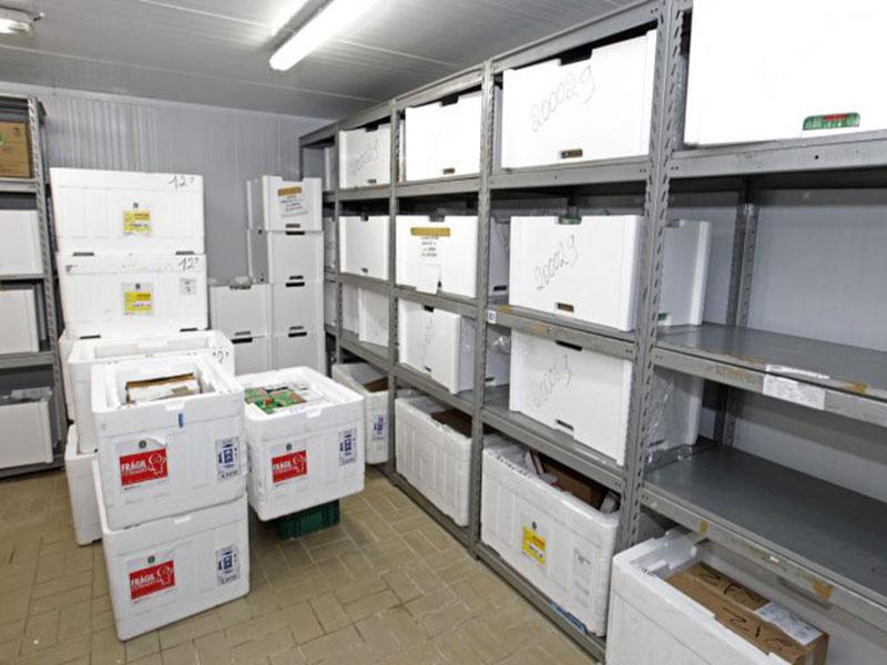 Cerca de 180 mil baianos serão imunizados contra o coronavírus nesta primeira fase, diz Governo Estadual